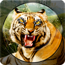 Forest Animal Hunting 2018 – 3D 1.2.4