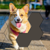 Hexa Puzzle Jigsaw: Anime Collection HD 1.12