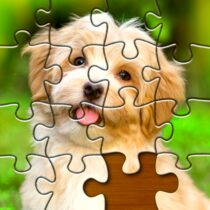 Jigsaw Puzzles Pro 🧩 – Free Jigsaw Puzzle Games