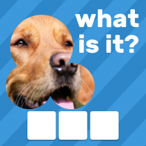 Zoom Quiz Close Up Pics Game, Guess the Word  3.3.0